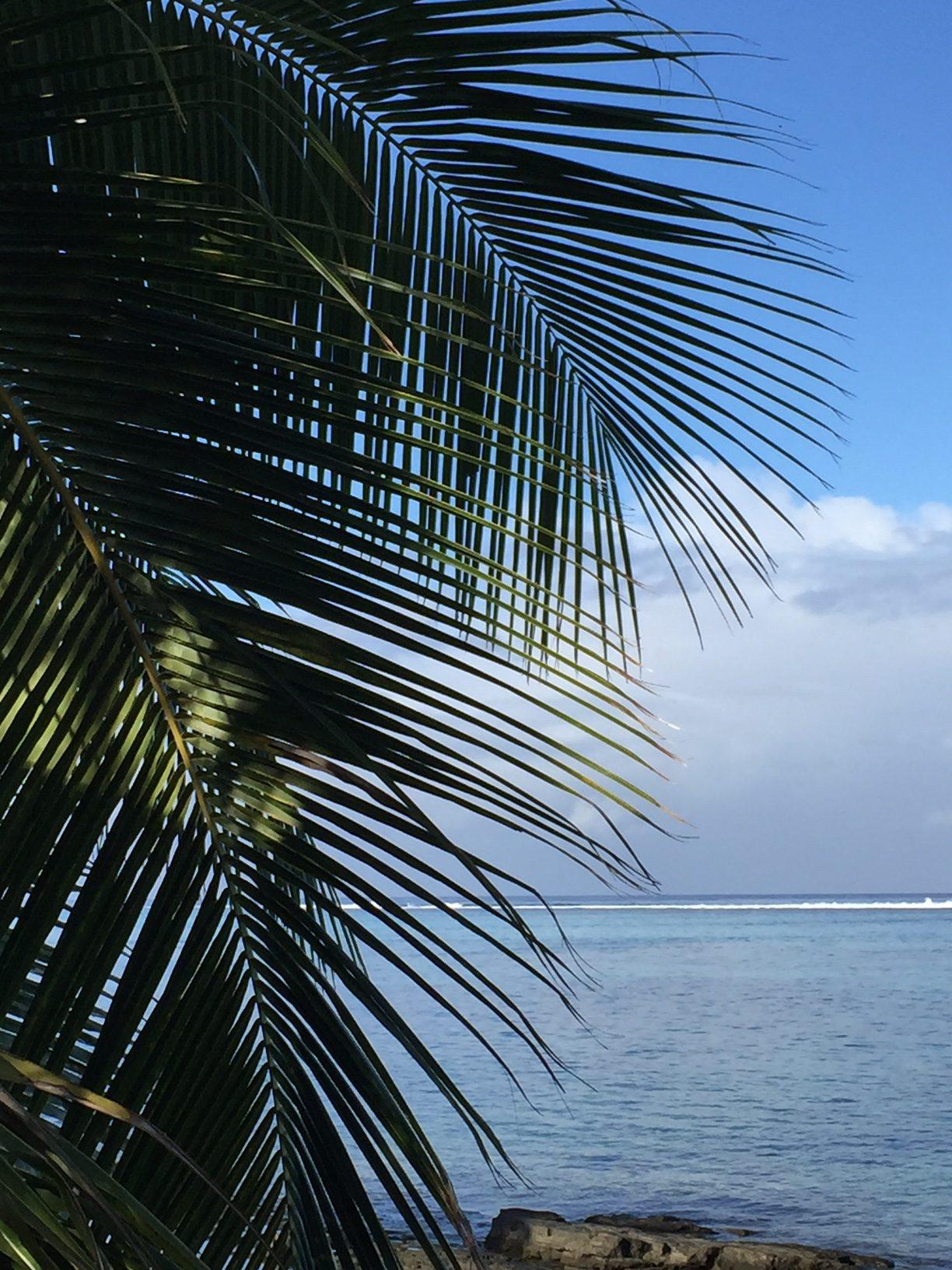 Morgonvy Oceaniens korallrev runt Tahiti