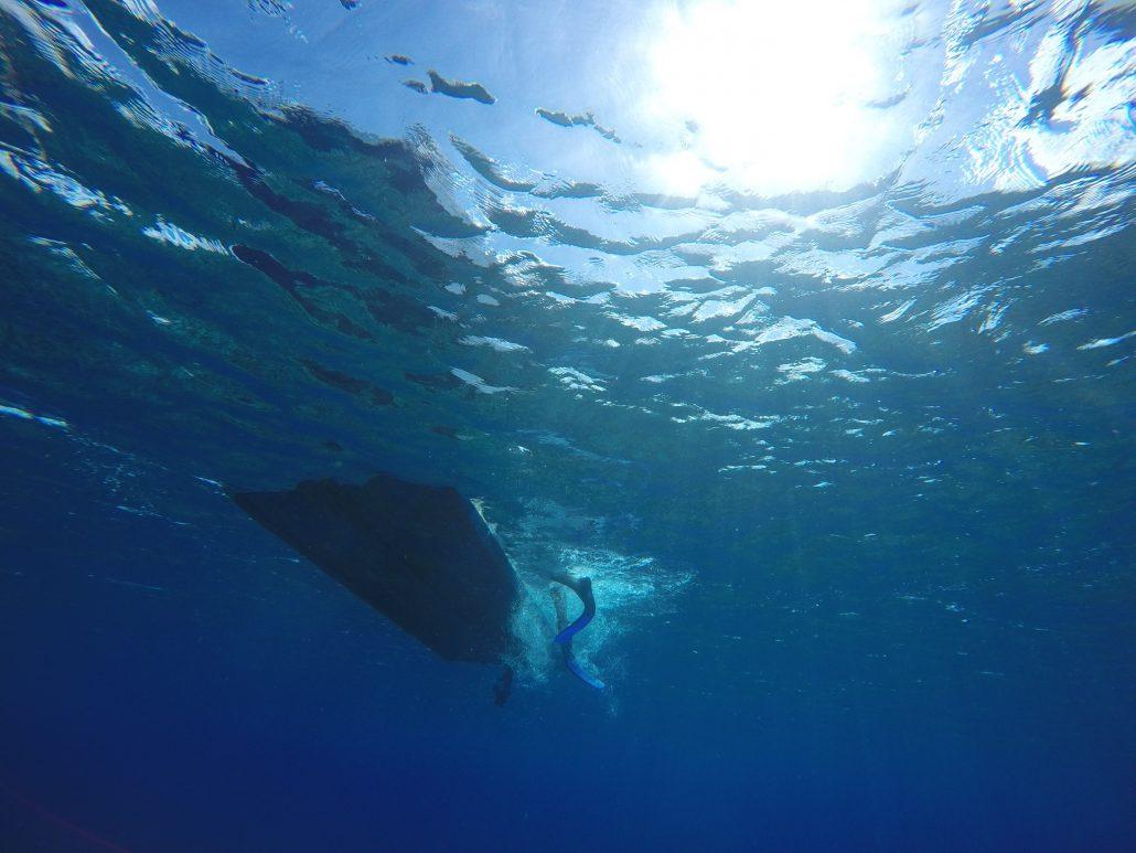 bild tagen utanför revet på Maupihaa, från några meters djup