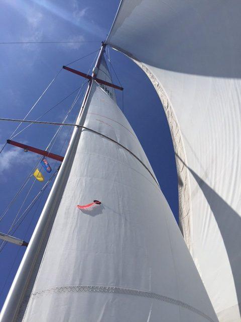 Njutbart att slänga en blick uppåt då o då. Fyllda segel, platt vatten, en lätt dyning. Skön segling Tonga - Fiji, 4 dygn till havs.