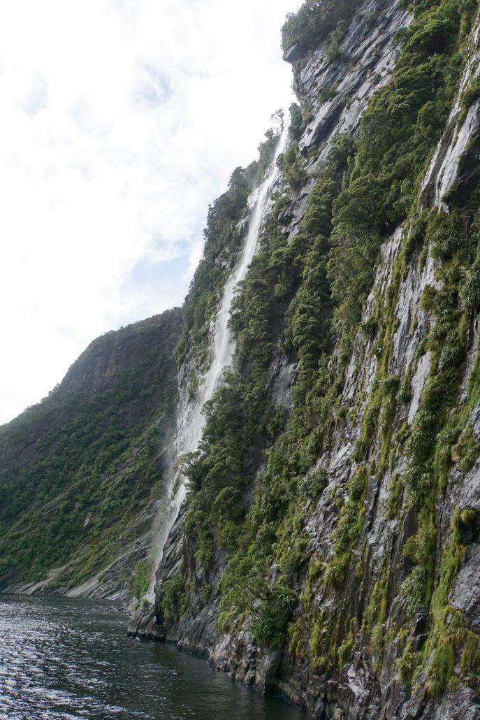 Allt är blött. Det regnar flera meter om året. Som guiden sa, utan regn var tredje dag vore det inte en regnskog.
