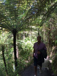 På vandring genom magisk bush.